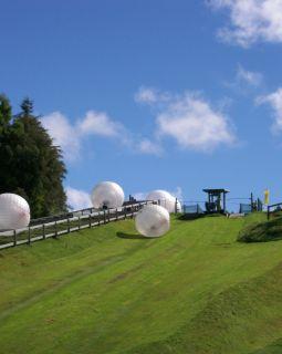 Zorbing at Rotorua
